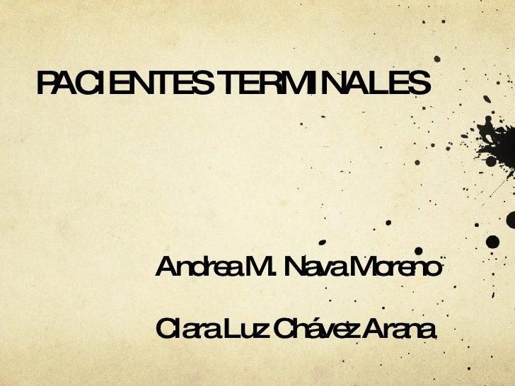PACIENTES TERMINALES Andrea M. Nava Moreno Clara Luz Chávez Arana
