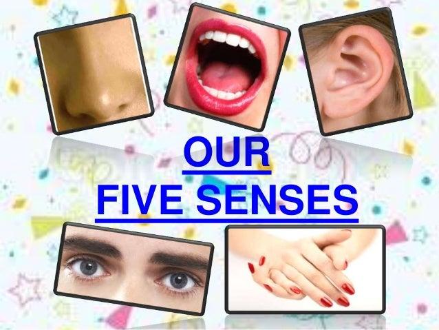 OURFIVE SENSES