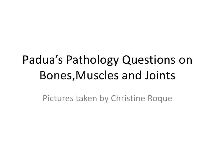 PADUA'S BONES,MUSCLES, AND JOINTS QUESTIONS