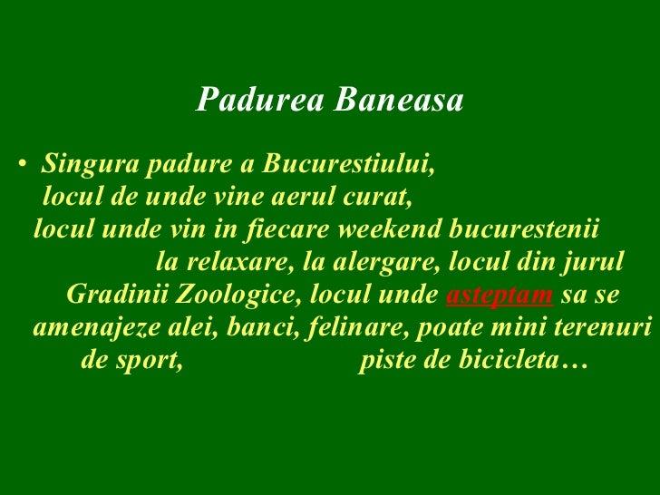 Padurea Baneasa amenintata de un dezastru ecologic