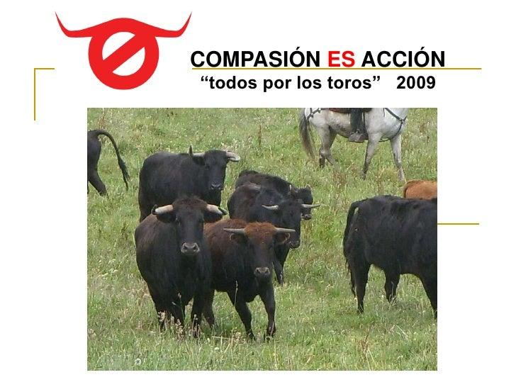 """COMPASIÓN ES ACCIÓN """"todos por los toros"""" 2009"""