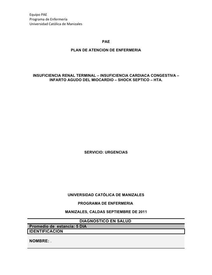 Equipo PAEPrograma de EnfermeríaUniversidad Católica de Manizales                                           PAE           ...