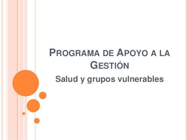 PROGRAMA DE APOYO A LA  GESTIÓN  Salud y grupos vulnerables