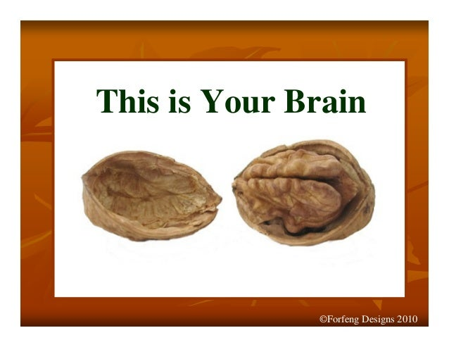 This is Your Brain ©Forfeng Designs 2010