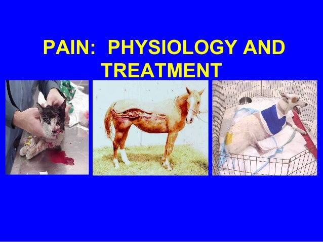 PAIN: PHYSIOLOGY AND TREATMENT
