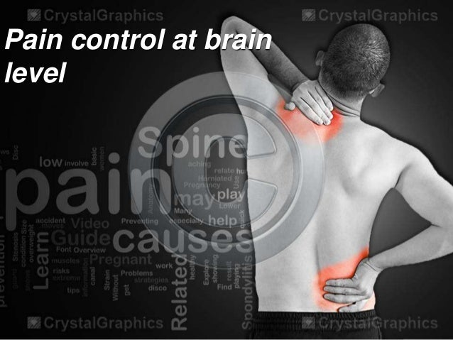 Pain control at brain level