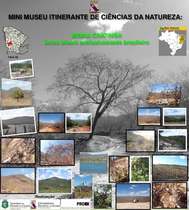 MINI MUSEU ITINERANTE DE CIÊNCIAS DA NATUREZA:                       BIOMA CAATINGA              único bioma exclusivament...