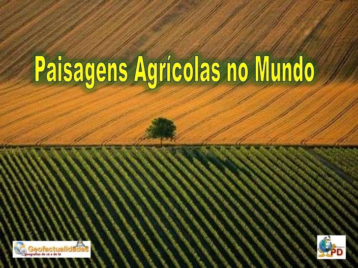 Paisagens Agrícolas no Mundo<br />