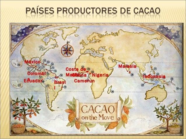 Paises productores de_cacao