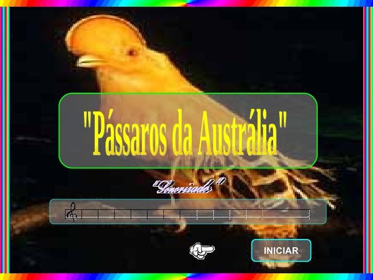 """""""Pássaros da Austrália"""" INICIAR"""