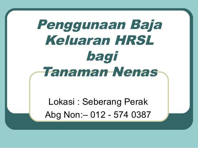 Penggunaan Baja Keluaran HRSL      bagi Tanaman Nenas  Lokasi : Seberang Perak Abg Non:– 012 - 574 0387