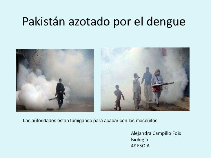Pakistán azotado por el dengueLas autoridades están fumigando para acabar con los mosquitos                               ...
