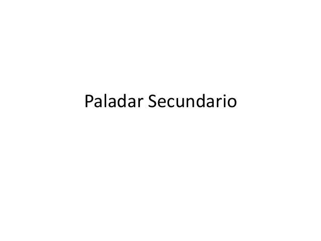 Paladar Secundario