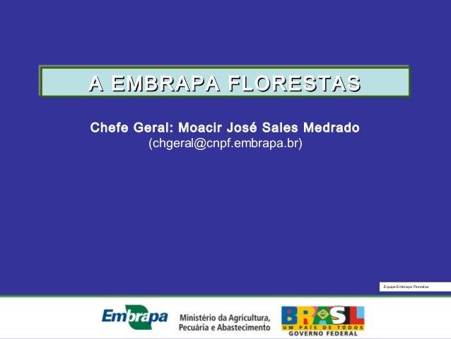 Equipe Embrapa FlorestasChefe Geral: Moacir José Sales Medrado(chgeral@cnpf.embrapa.br)A EMBRAPA FLORESTASA EMBRAPA FLORES...