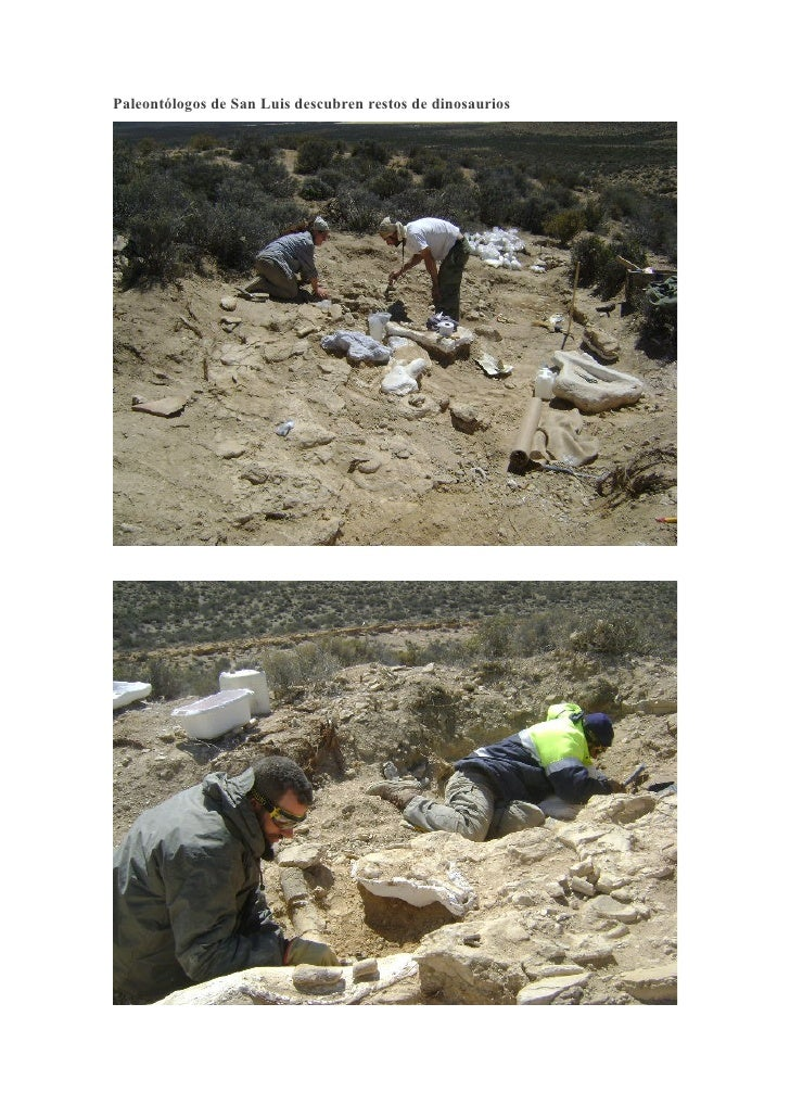 Paleontólogos de San Luis descubren restos de dinosaurios