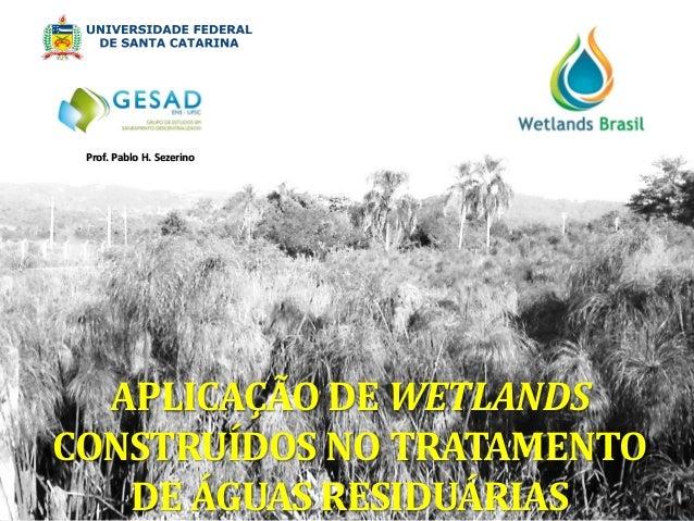 APLICAÇÃO DE WETLANDS CONSTRUÍDOS NO TRATAMENTO DE ÁGUAS RESIDUÁRIAS  Prof. Pablo H. Sezerino