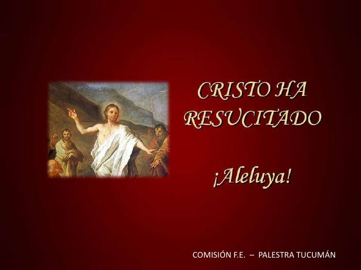 COMISIÓN F.E.  –  PALESTRA TUCUMÁN<br />
