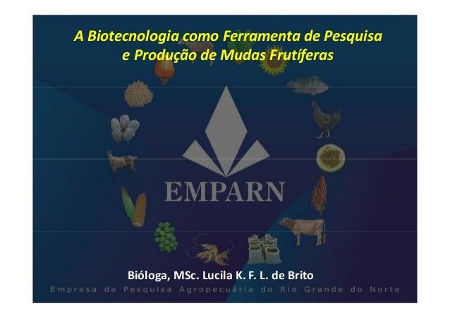 A Biotecnologia como Ferramenta de Pesquisa       e Produção de Mudas Frutíferas       Bióloga, MSc. Lucila K. F. L. de Br...