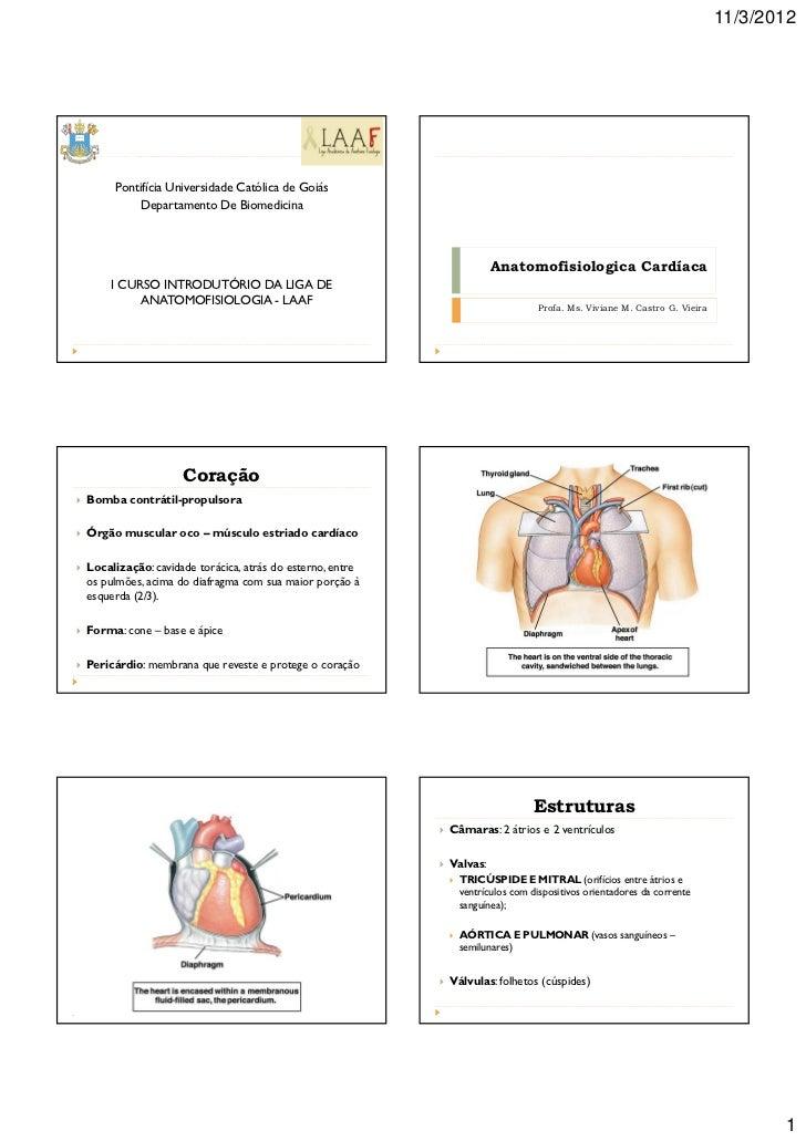 11/3/2012     Pontifícia Universidade Católica de Goiás          Departamento De Biomedicina                              ...