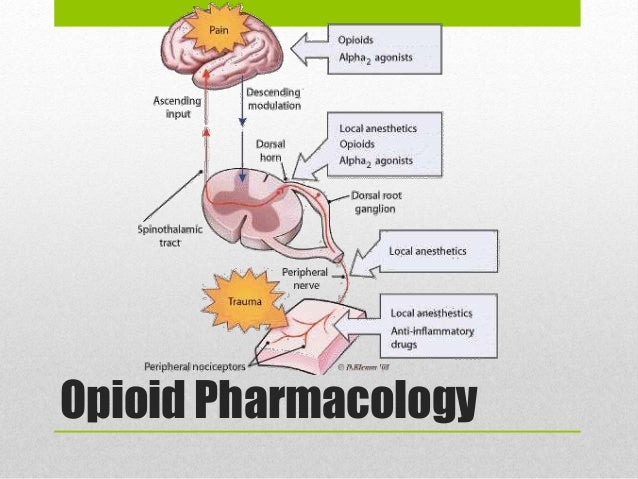 steroid tablets back pain