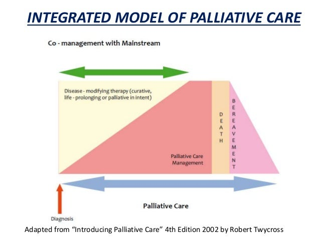 an analysis of the role of the expert palliative care nurse Advanced practice oncology nurse competency expert  practice palliative care nurse  lower caregiver burden during palliative cancer care.