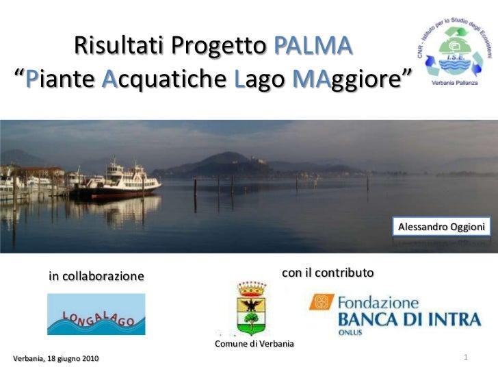 PALMA Project - Aquatic Plants in Lake Maggiore