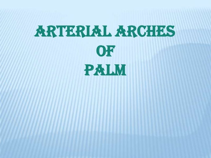 ARTERIAL ARCHES      OF     PALM