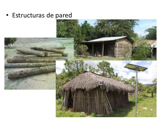 Materiales org nicos palmas varas troncos - Construcciones bibiloni palma ...