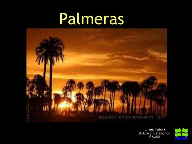 sib.gov.ar             Palmeras                            Liliana Fabbri                        Botánica Sistemática     ...