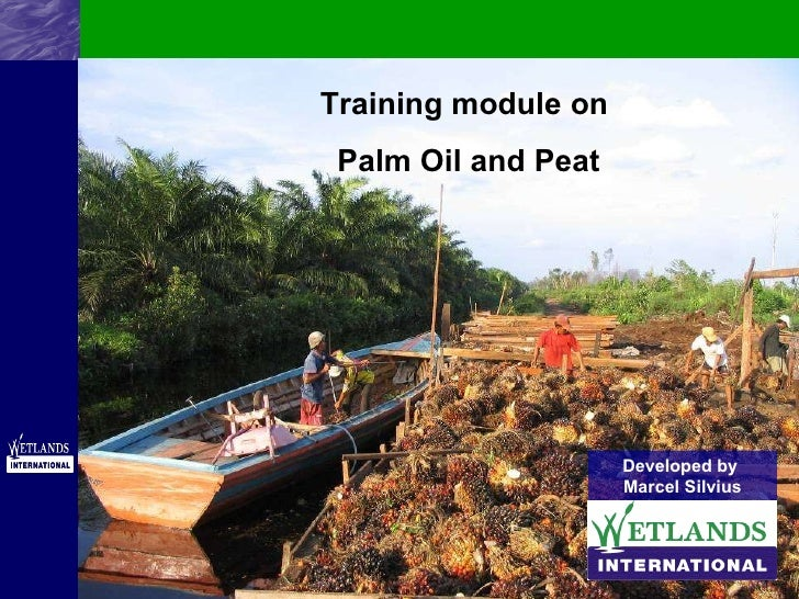 Training module on  Palm Oil and Peat Developed by  Marcel Silvius