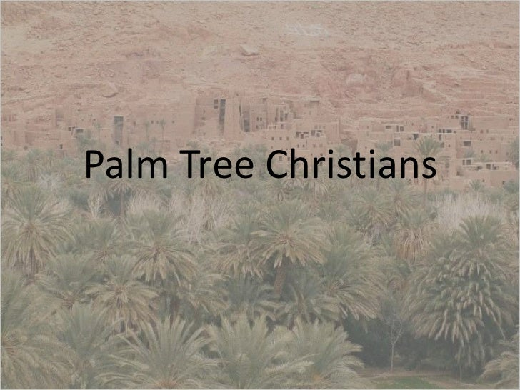 Palm tree christians