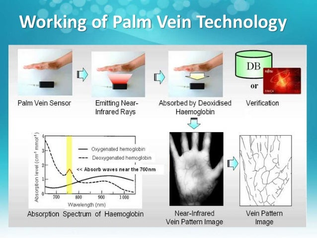 palm vein technology essay Working with fujitsu, microsoft is further embracing biometric technology with the implementation of a palm-vein authentication system.
