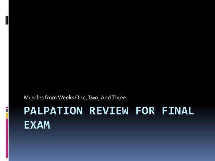 Palpation Review for Final Exam<br />Muscles from Weeks One, Two, And Three<br />