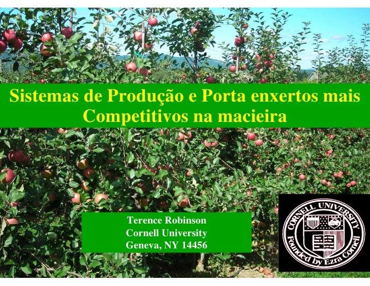 Sistemas de Produção e Porta enxertos mais         Competitivos na macieira             Terence Robinson             Corne...