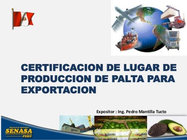 CERTIFICACION DE LUGAR DEPRODUCCION DE PALTA PARAEXPORTACION            Expositor : Ing. Pedro Mantilla Tucto