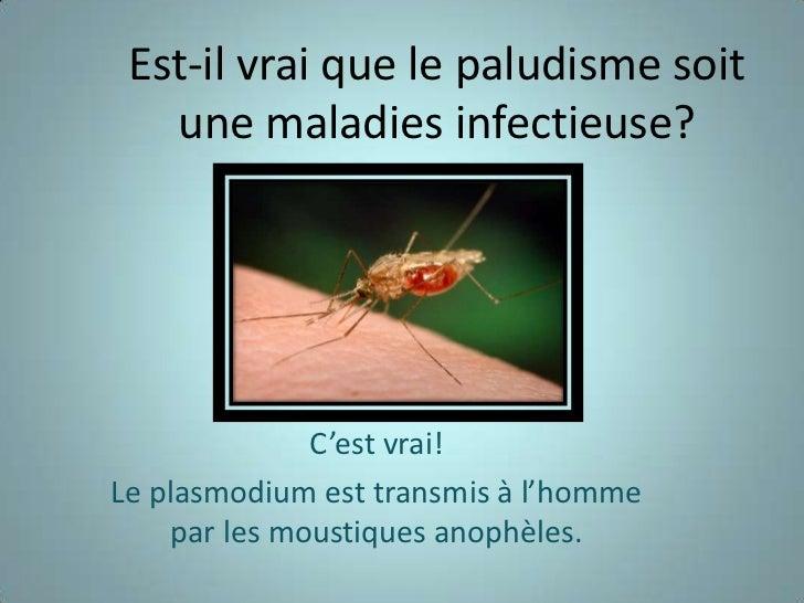 Est-il vrai que le paludisme soit   une maladies infectieuse?              C'est vrai!Le plasmodium est transmis à l'homme...