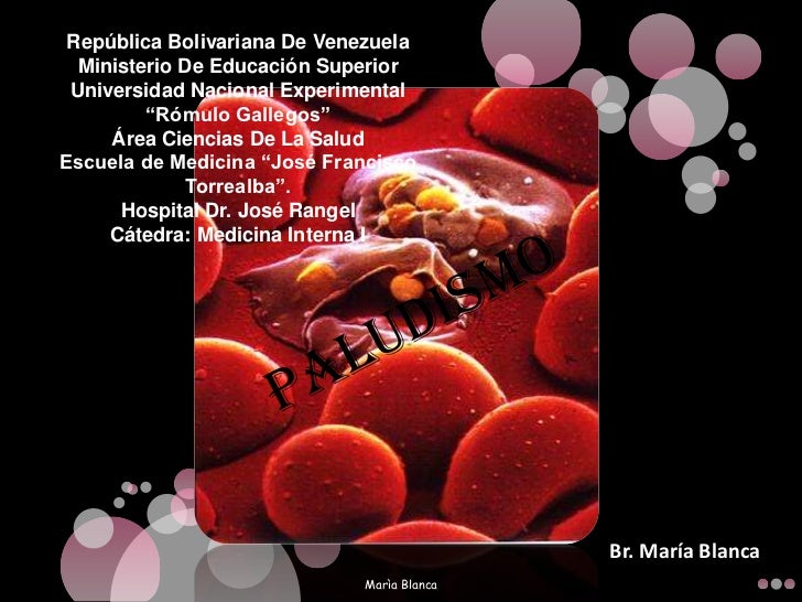 """República Bolivariana De VenezuelaMinisterio De Educación SuperiorUniversidad Nacional Experimental """"Rómulo Gallegos""""Área ..."""