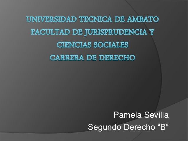 "Pamela SevillaSegundo Derecho ""B"""