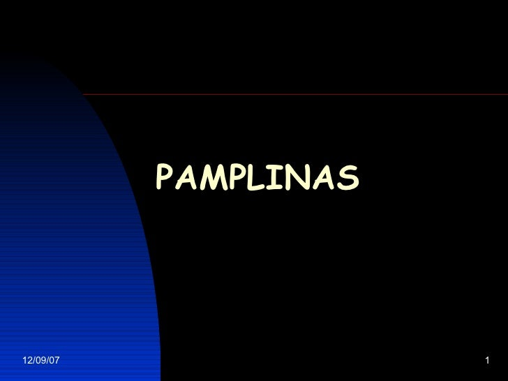P AMPLINAS