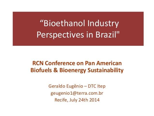 Pan   g eugenio - bioethanol industry perspectives.pptx - jun 24 2014