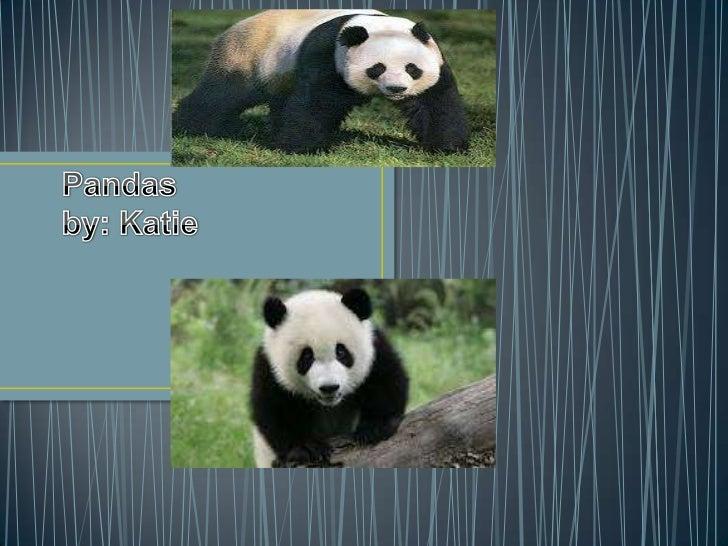 http://images.google.com/imgres?q=panda+waving&hl=en&safe=active&biw=1311&bih=564&tbm=isch&tbnid=pk74B6WDQKC6aM:&imgrefurl...