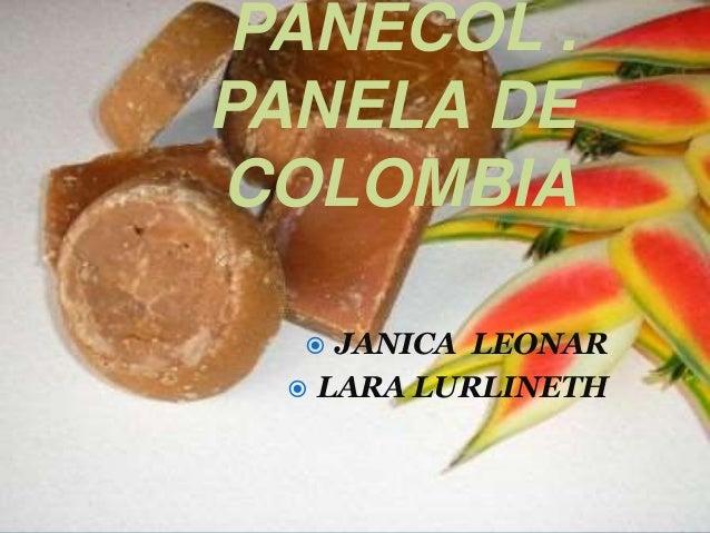 PANECOL . PANELA DE COLOMBIA  JANICA LEONAR  LARA LURLINETH