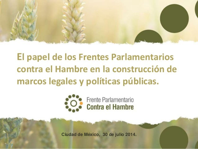 FPH - Panel 2 - El papel de los Frentes Parlamentarios contra el Hambre en la construcción de marcos legales y políticas públicas