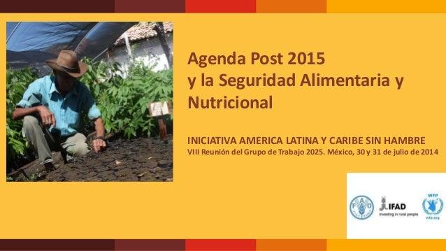 Agenda Post 2015 y la Seguridad Alimentaria y Nutricional INICIATIVA AMERICA LATINA Y CARIBE SIN HAMBRE VIII Reunión del G...