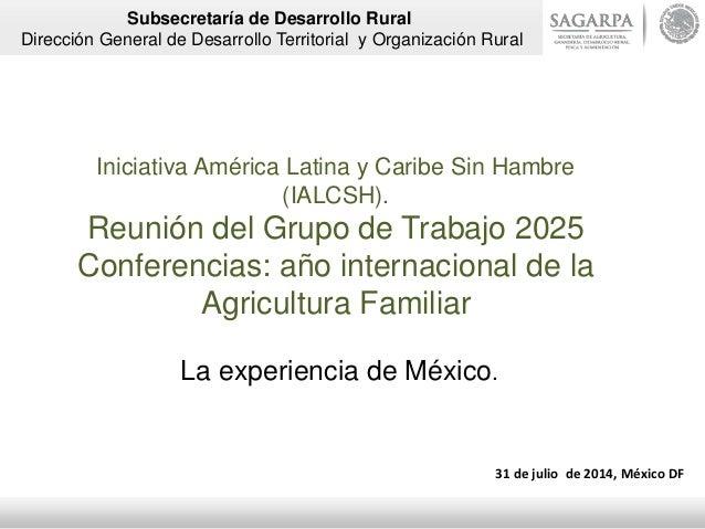 Iniciativa América Latina y Caribe Sin Hambre (IALCSH). Reunión del Grupo de Trabajo 2025 Conferencias: año internacional ...