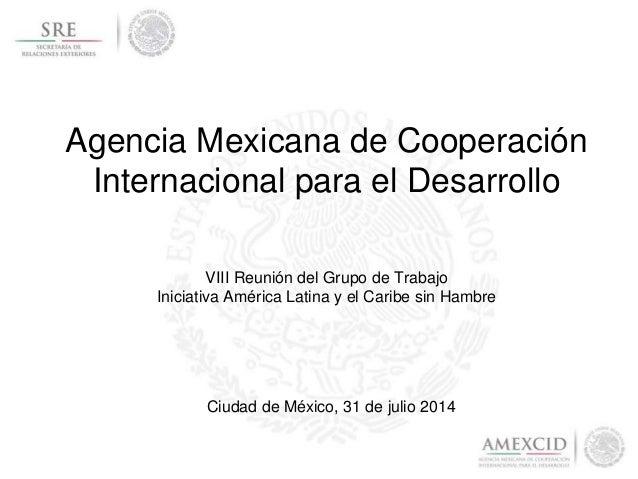 Agencia Mexicana de Cooperación Internacional para el Desarrollo Ciudad de México, 31 de julio 2014 VIII Reunión del Grupo...