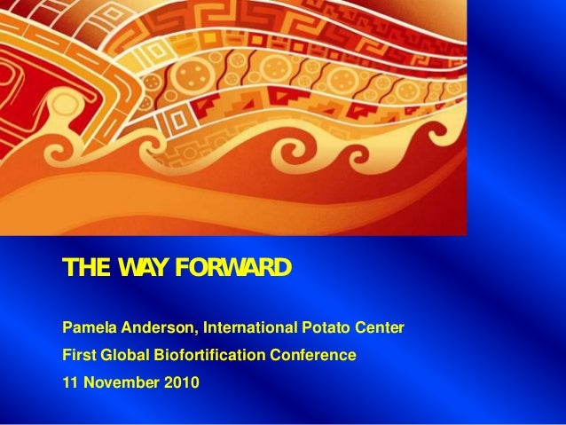 THE WAY FORWARD Pamela Anderson, International Potato Center First Global Biofortification Conference 11 November 2010