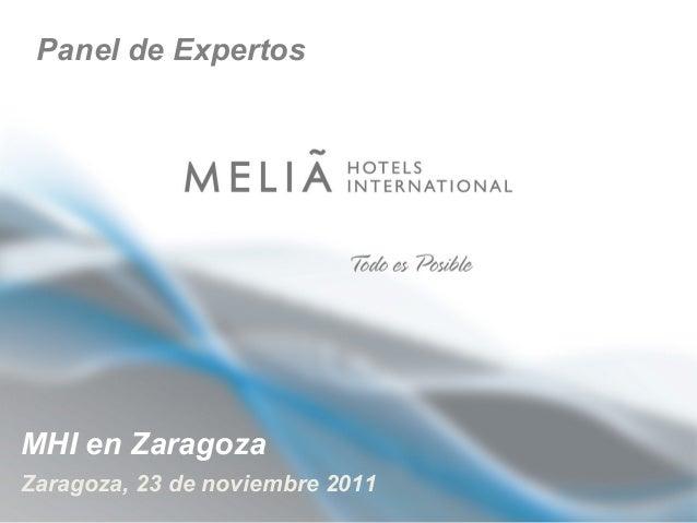 Panel de Expertos  MHI en Zaragoza Zaragoza, 23 de noviembre 2011