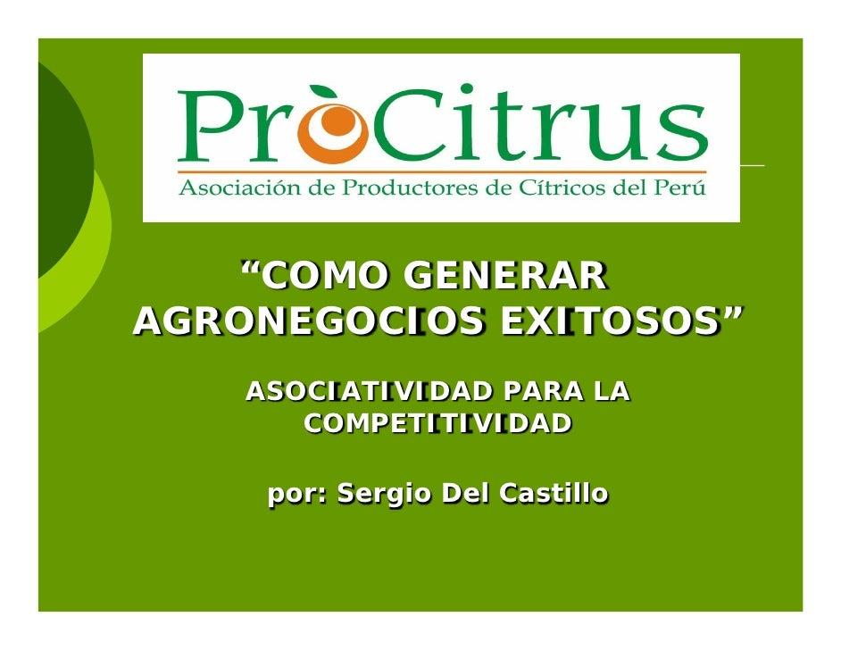 """""""COMO GENERARAGRONEGOCIOS EXITOSOS""""    ASOCIATIVIDAD PARA LA       COMPETITIVIDAD     por: Sergio Del Castillo"""