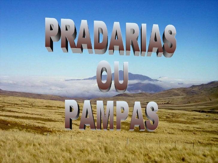 PRADARIAS  OU  PAMPAS